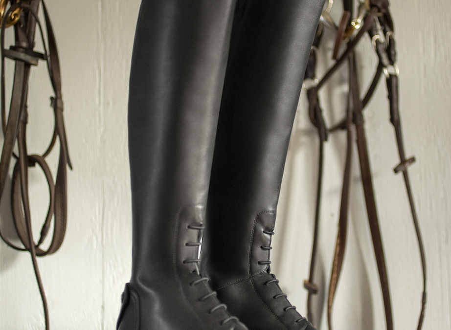 New Ariat Palisade Boot