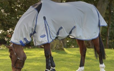5 Reasons for Fly Rugs & Masks